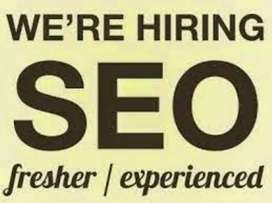 SEO Fresher Intern Female Required