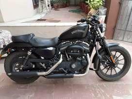 Harley Davidson Iron 883, black colour