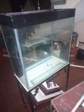 2 feet aquarium with stand , cover and filter