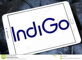 Indigo airlines urgent hiring manager and supervisor