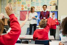 Required primary teachers urgently