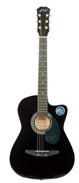 Music instrument guitar