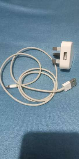 iPhone charger (original)