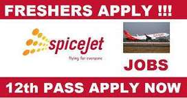 Apply for Bright Future In Spice Jet Airline Pvt Ltd Company Great Opp