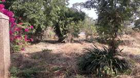35 Guntha Plot with Trees, Compound, Gate for sale, near Karjat-Chowk