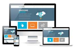 I can build Wordpress & Shopify Responsive and Professional Website