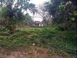 25 Acres Rubber Estate for Sale at Mannarkkad, Perinthalmanna.