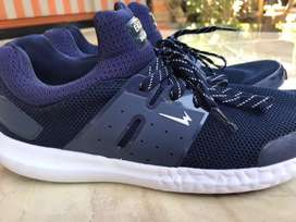 Eagle Sneakers Navy