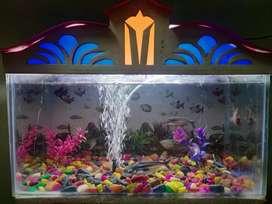 Aquarium 18 inchs