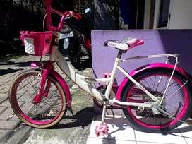 Sepeda anak anak