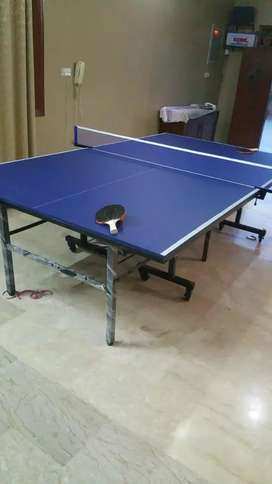 Ping pong table free net bat and ball s