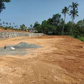 Kothamangalam ayyappanmudy ( chelad roots)4,9,  7 cent plots availabl