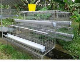 Used Hen cages