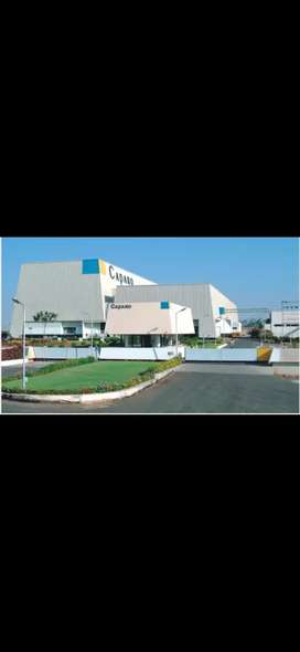 Need for fresher candidates in caparo Group of Company