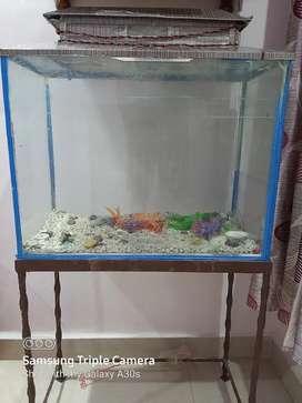 Fish aquarium// Heavy discount // price reduce 3 days hurryýyyyyyyyyy