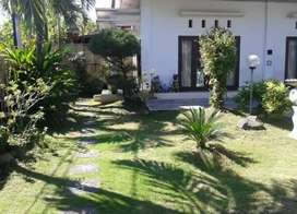 Sewa rumah bisa bulanan 2lantai dengan halaman garden yg luas di renon
