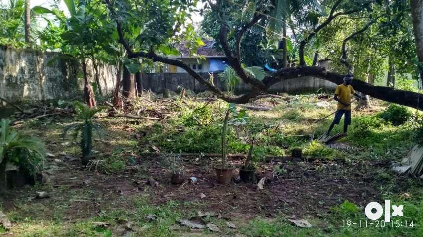 4.24 cents house plot suitable for building house, 0