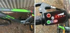 Bicycle electric motor