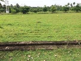 167 sq yr vuda layout plot  near boghapuram and back side of gum city