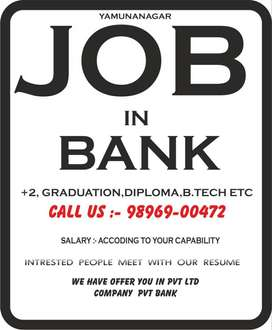 PVT BANK JOB