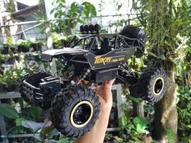 RC Offroad 4WD Rock Crawler Metal Alloy Material 2,4Ghz 1:12 Scale