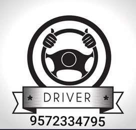 Temporary Driver