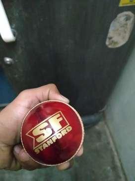SF cricket balls