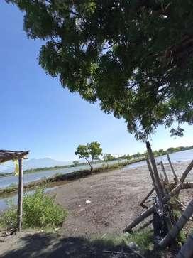 Tanah tambak harga MURAH luas 5 hektar, Kec.JABON, Kab.Sidoarjo