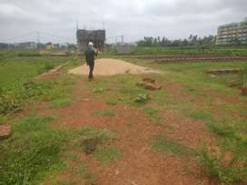 NH Touch plot in Janla