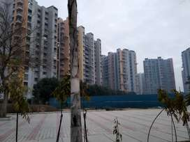 3 BHK Flat for Rent in Bharat City Ghaziabad@6500/M