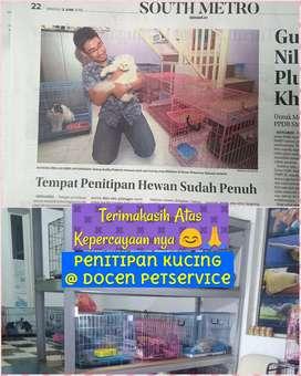 Penitipan Kucing - Grooming - Dokter Hewan Sidoarjo