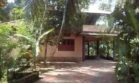 4Bhk independent house in Samkranthi parampuzha kottayam