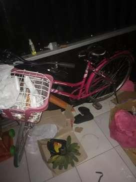 Sepeda mini dewasa