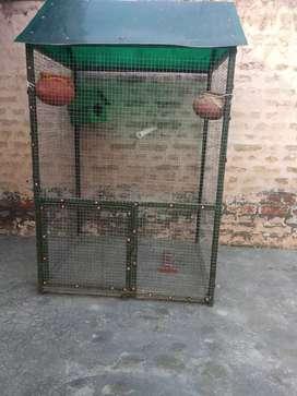 Cage of birds sparrows 2.7/4 feet