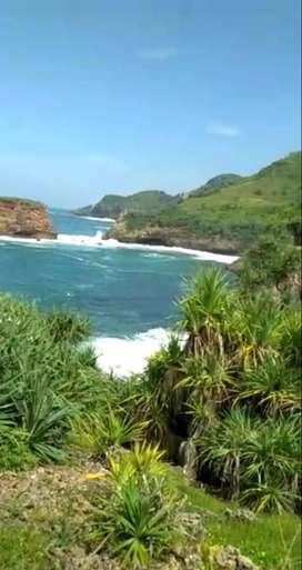 Kode : TP 1957 #Tanah Bagus Strategis di Pantai Ngondo Gunung Kidul