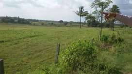 River attached agriculture land for sale on H D Kote road, Mysore.