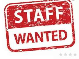 Wanted Male/ Female Staff