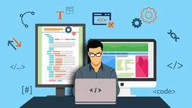 Software/website developer