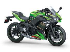 NEW HEAVY BIKE Model Kawasaki Z Edition