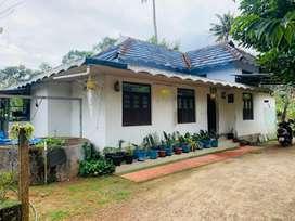 Aluva vazhakulam 17cent tiled house cent 3.50lakh