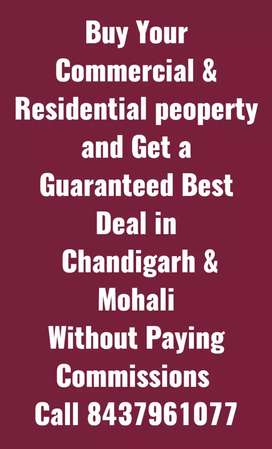 Commercial and Residential peoperty in Chandigarh and Mohali