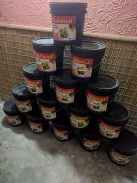 Paint in very cheap price.