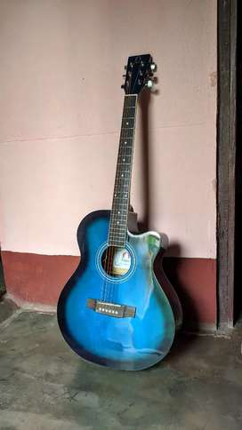 Acoustic Guitar With ELECTRONIC PICKUP