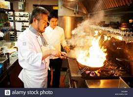 Wanted Chinese cook