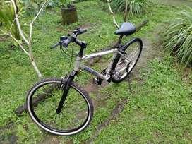 Sepeda Polygon Extrada
