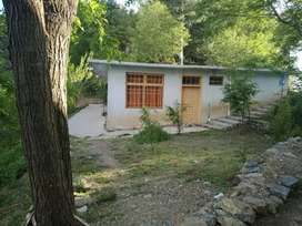 Nathiagali: Furnished home (separate rooms also) available for rent.