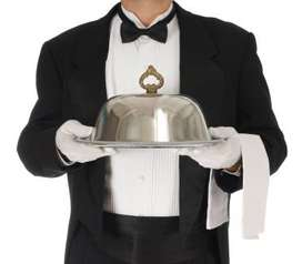 Urgent Requirement for hotel staff in 5 star hotels