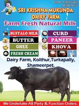 Sri Krishna Mukunda Dairy Farm