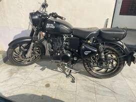 Classic 500 cc