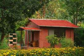 New Mahabaleshwar: Buy Studio Bungalow / Agriculture / NA plot